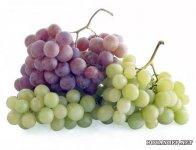 Сиратта – виноград