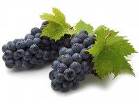 Виноград иғтибар талап итә